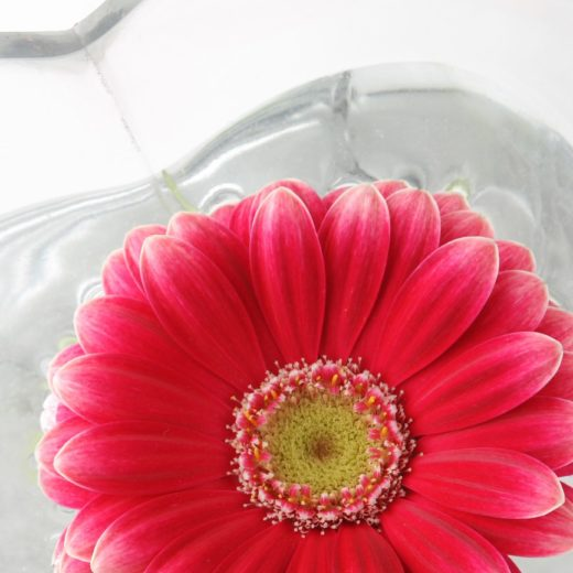 Love to Love カウンセラーによるブログ